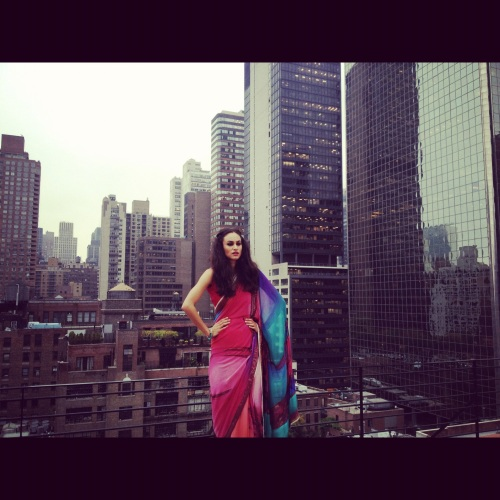 designer saree sari near new york city skyline