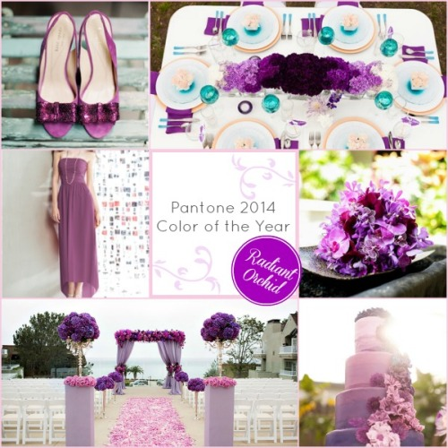 Radiant Orchid mood board