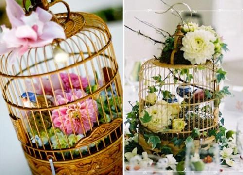 Love bird inspiration